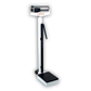 Physician Balance Beam Scales
