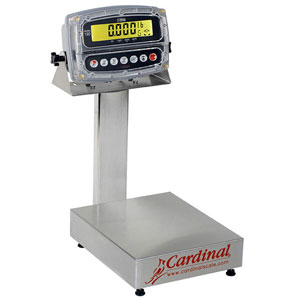 Detecto EB-190 Series Stainless Steel Bench Scales with 190 Indicator