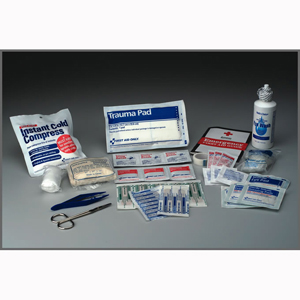 First Aid Only 224-U 25 Person, 107 Piece Bulk First Aid Kit