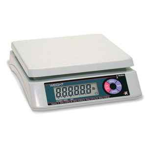 Rice Lake Ishida iPC Portable Bench Scales