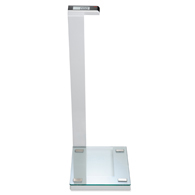 Seca Supra 719 Supra Waist High Digital Scale with Glass Platform